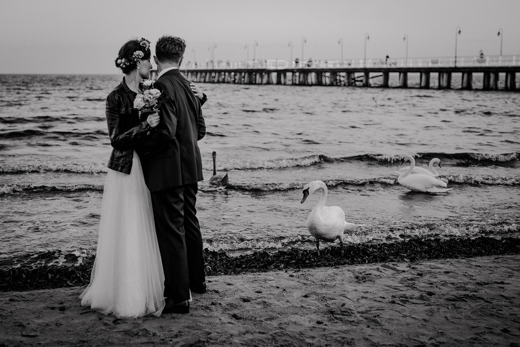 alternatywna fotografia ślubna trójmiasto